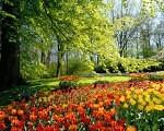 <!--:it-->Primavera Ayurvedica<!--:--><!--:en-->Primavera Ayurvedica<!--:-->