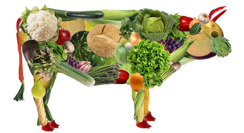Ambiente e alimentazione